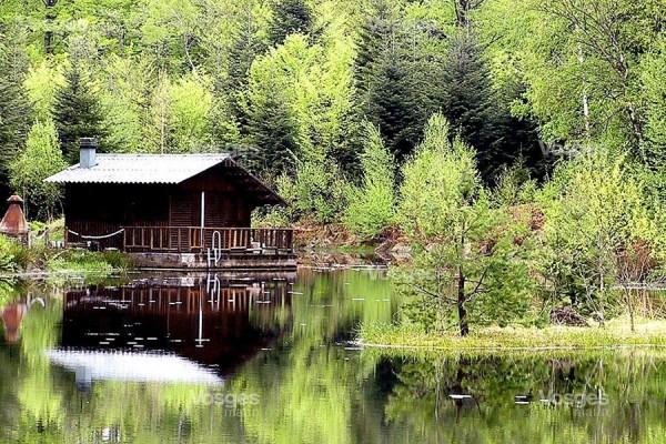 ballades et randonnées au Plateau des 1000 étangs