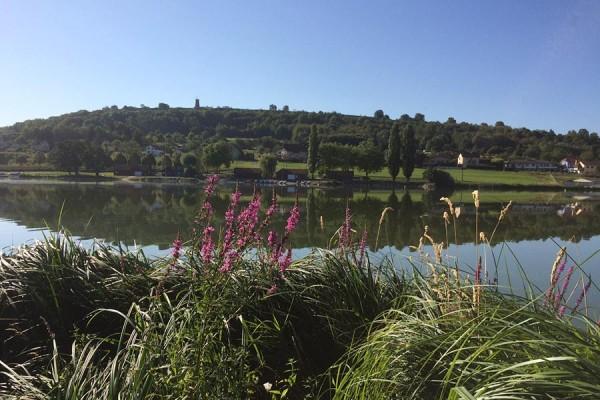 sentier de la roseliere autour de l'étang des Forges Belfort