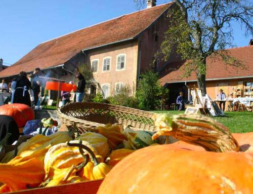 Découvrir le Musée agricole de Botans